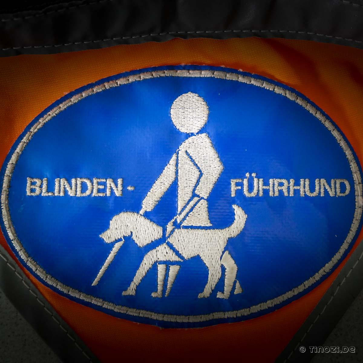 Bildergebnis für blindenführhund